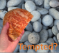 "Café Church - ""Tempted?"" thumbnail"